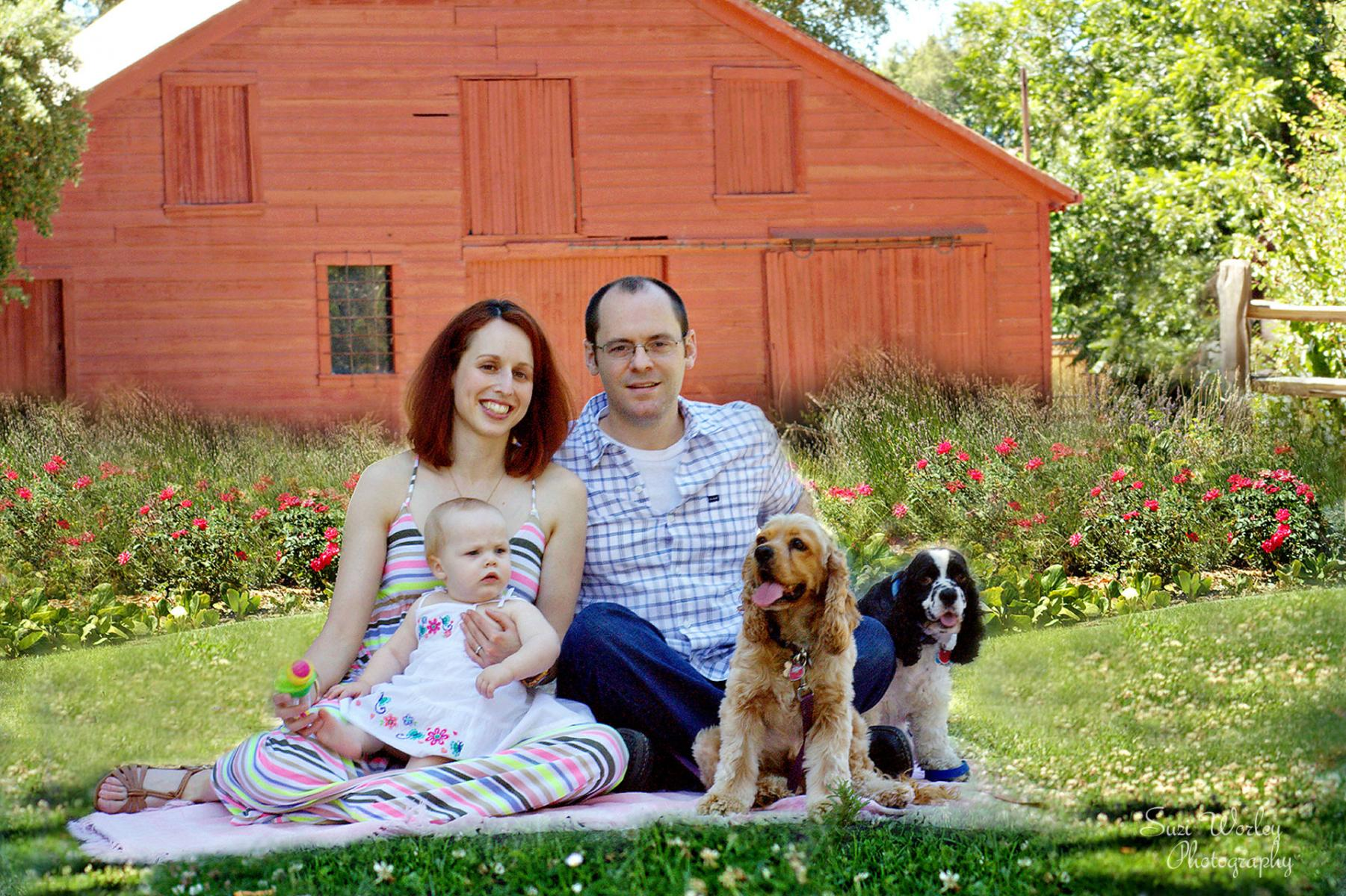 Family, farm, and flowers! #Family #one-year-old #CockerSpaniels #pups #Family #SuziWorleyPhotography